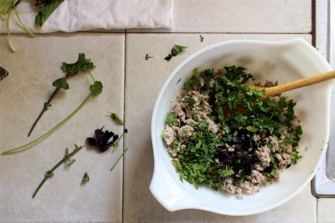 fresh herbs paleo thai larb